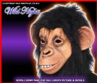FANCY DRESS MASK # FULL OVERHEAD CHIMP MONKEY APE MASK